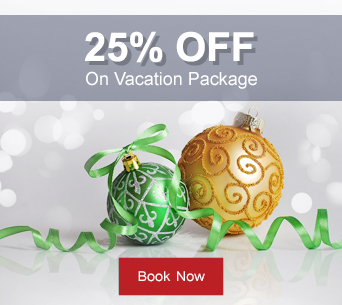 Christmas travel Deal