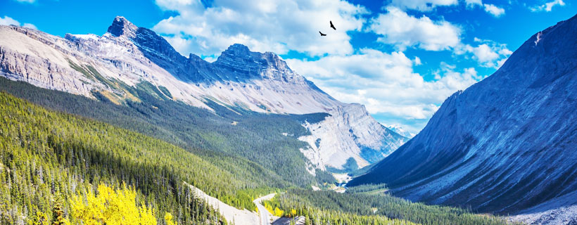 Canadian Rockies Tour Packages