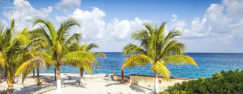 cozumel vacation deals