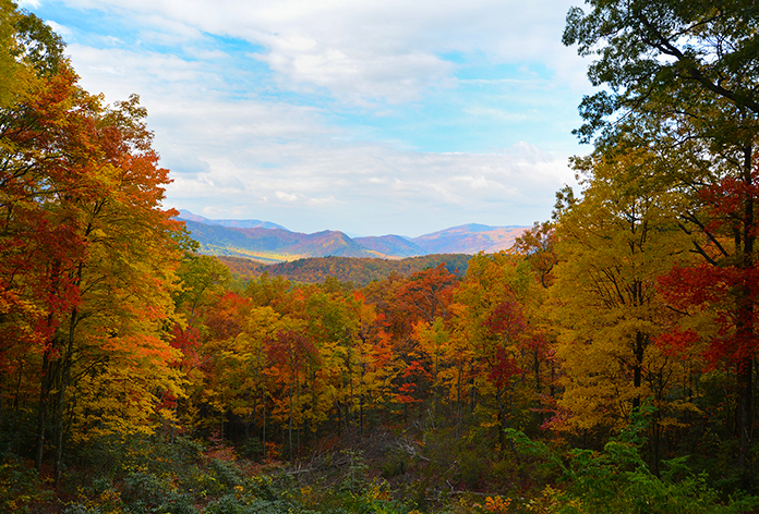 Some best places to celebrate thanksgiving bookotrip for Gatlinburg craft show 2017