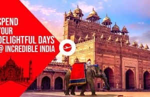 best time to visit india